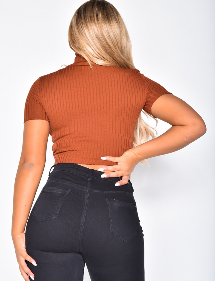 Short Sleeved Ribbed Polo Neck Jumper